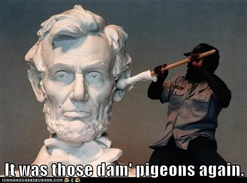 It was those dam' pigeons again.