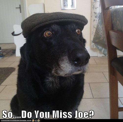 So....Do You Miss Joe?