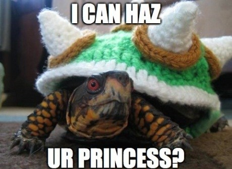 The Cutest Bowser You'll Ever See