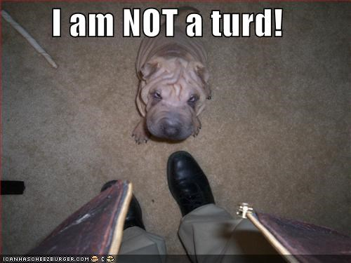 I am NOT a turd!