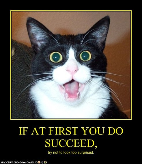 IF AT FIRST YOU DO SUCCEED,