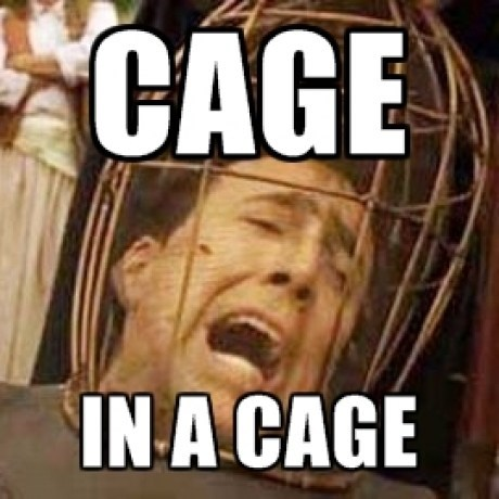 Rage Against the Cage
