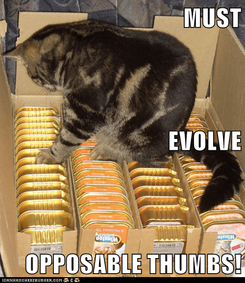 MUST EVOLVE OPPOSABLE THUMBS!