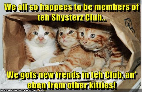 We all so happees to be members of teh Shysterz Club..  We gots new frends in teh Club, an' eben from other kitties!