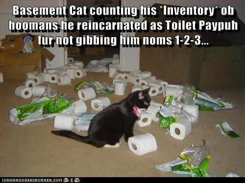 Basement Cat counting his *Inventory* ob hoomans he reincarnated as Toilet Paypuh fur not gibbing him noms 1-2-3...