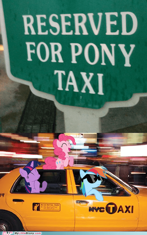 ALL ABOARD THE PONY TAXI