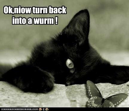 Ok,niow turn back into a wurm !