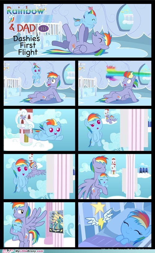 Dashie's First Flight