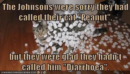 "The Johnsons were sorry they had called their cat ""Peanut"",  but they were glad they hadn't called him ""Diarrhoea""."