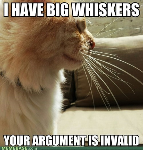 I'd take this cat to court.