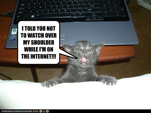 I TOLD YOU NOT TO WATCH OVER MY SHOULDER WHILE I'M ON THE INTERNET!!!
