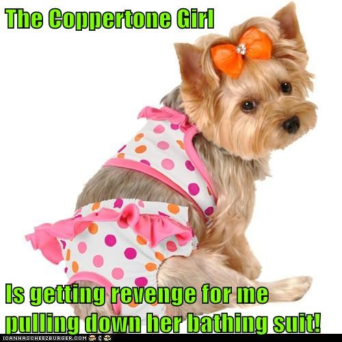 The Coppertone Girl  Is getting revenge for me pulling down her bathing suit!