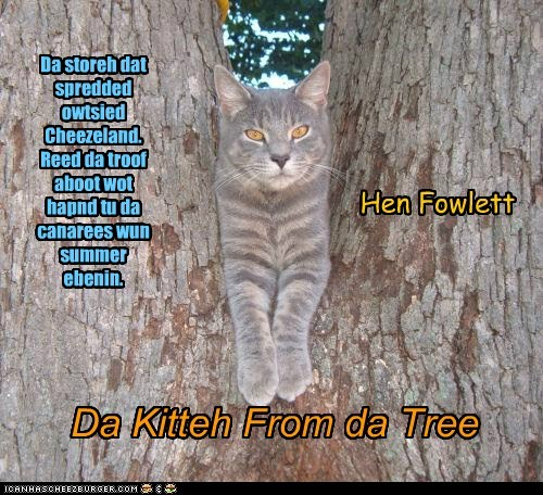 Da Kitteh From da Tree