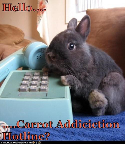 Hello....  ....Carrot Addiciction Hotline?