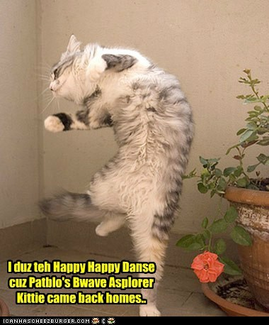 Kittie dances cuz he's happy!!