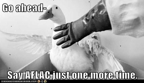 Go ahead-  Say AFLAC just one more time.
