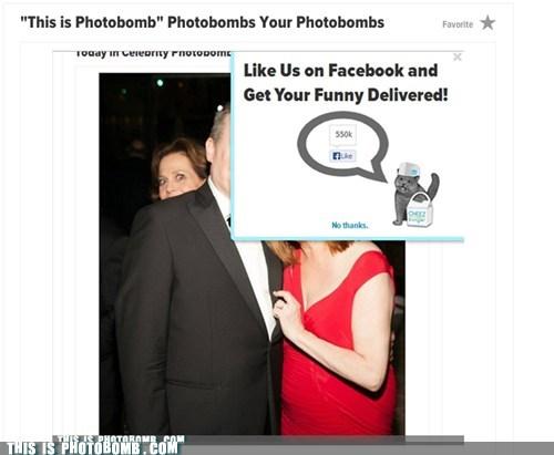 Cheezburgerbomb of Photobombing Photobomber