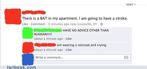 bats,stroke,bat,crying