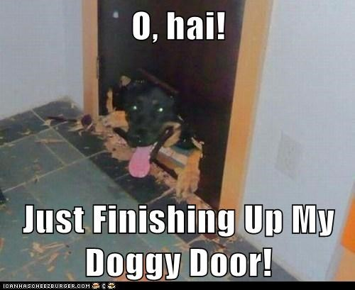 O, hai!  Just Finishing Up My Doggy Door!