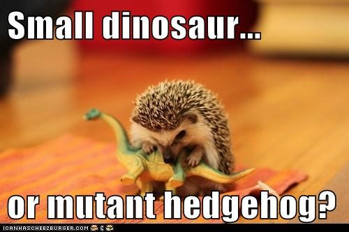 Small dinosaur...  or mutant hedgehog?