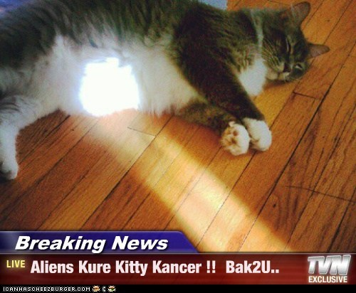 Breaking News - Aliens Kure Kitty Kancer !!  Bak2U..
