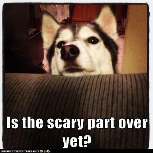 I Don't Leik the Scary Parts