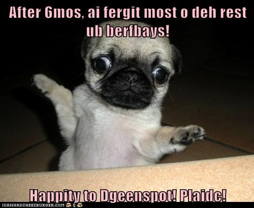 After 6mos, ai fergit most o deh rest ub berfbays!  Happity to Dgeenspot! Plaidc!