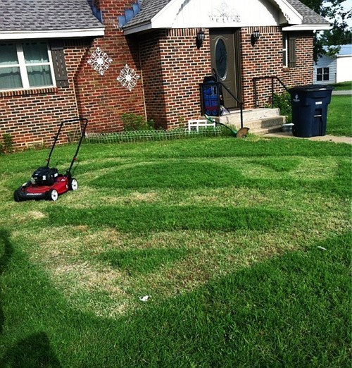 This Lawn Stands for Hope
