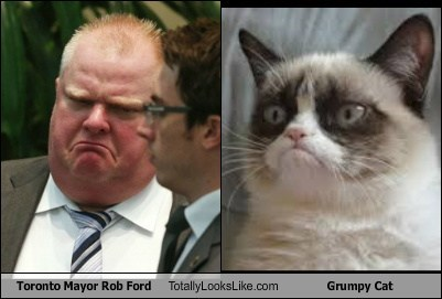 Toronto Mayor Rob Ford Totally Looks Like Grumpy Cat