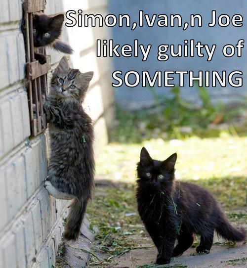 Simon,Ivan,n Joe likely guilty of SOMETHING