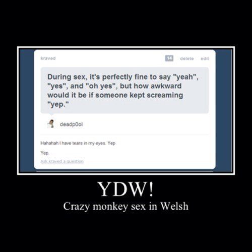YDW... Welsh for Yes