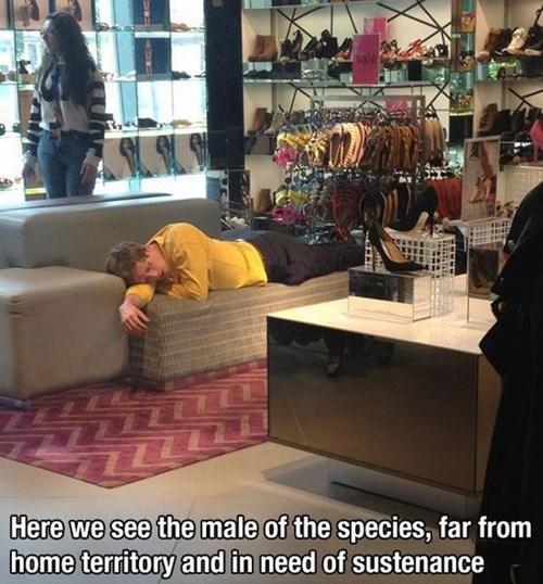 shopping,naps,funny,men vs women,g rated,dating