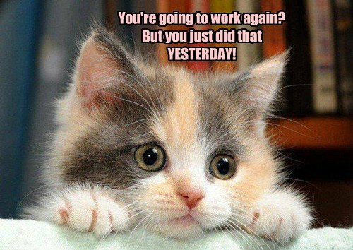 You're going to work again? But you just did that YESTERDAY!