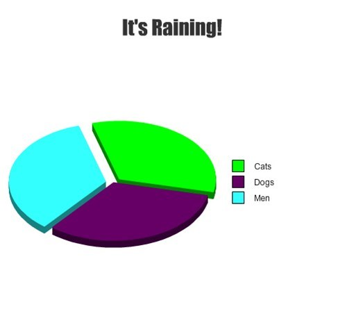 pie charts,graphs,funny,rain