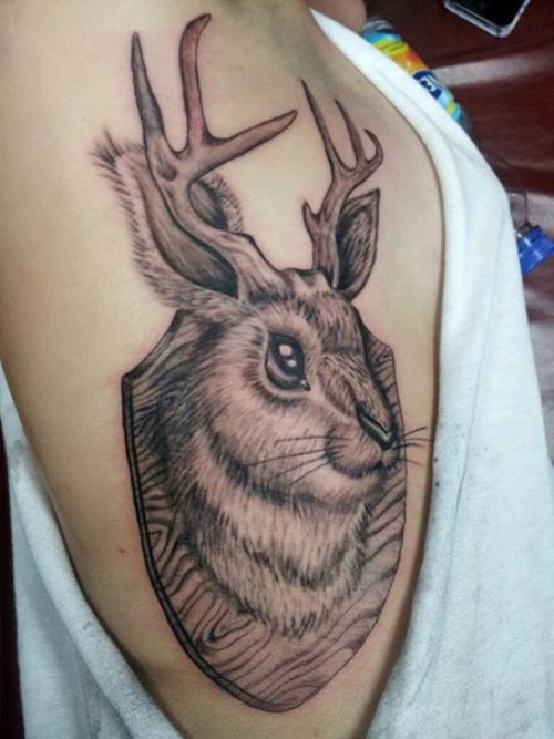 jackalopes,tattoos,funny