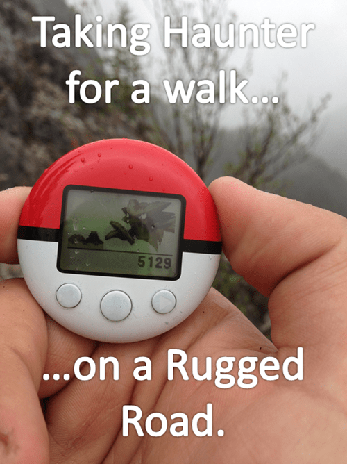 Poke-walking IRL