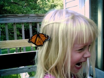 butterflies,phobias,funny