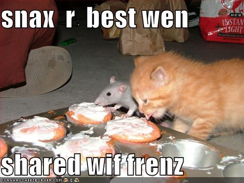 snax  r  best wen  shared wif frenz
