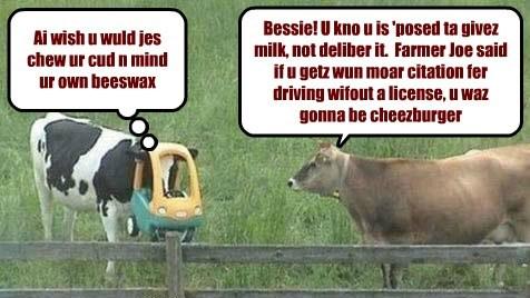 Bessie haz a need for speed