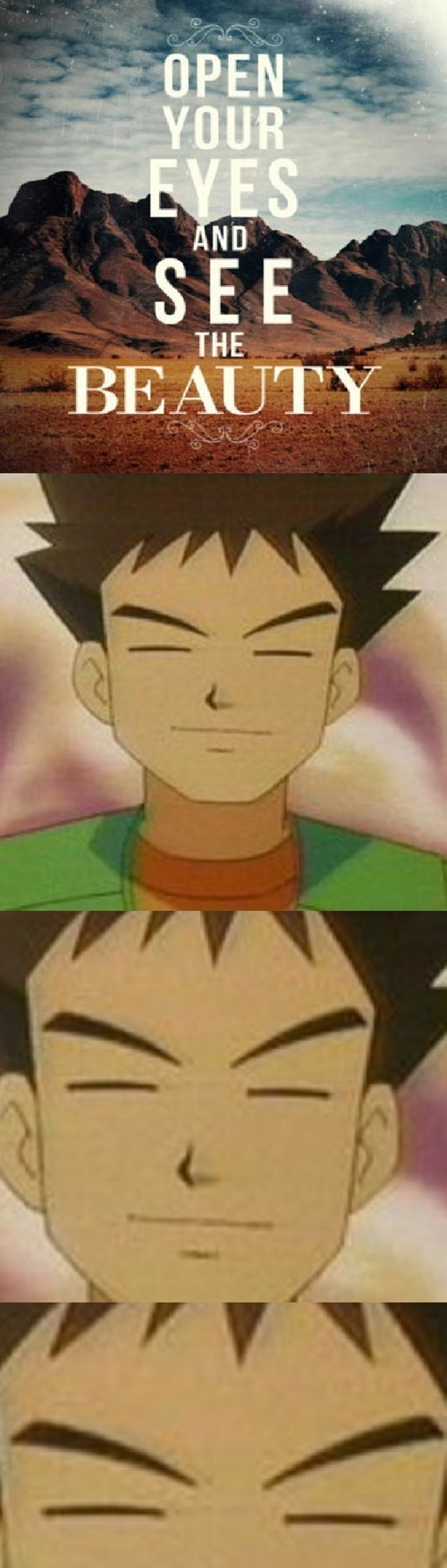 brock,Pokémon,eyes