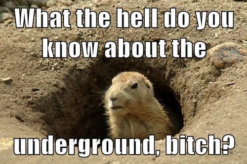 What the hell do you know about the  underground, b*tch?