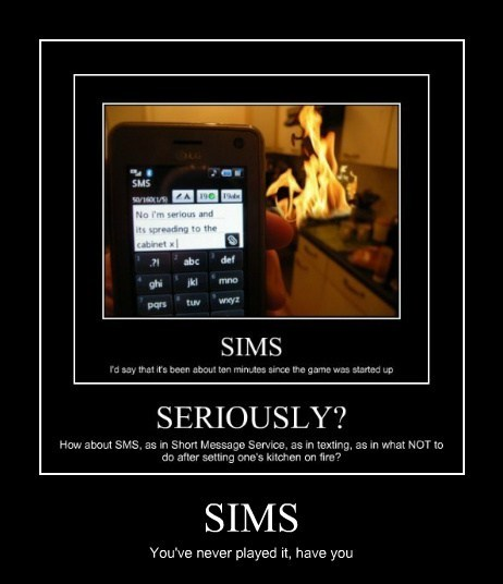 Learn to Sims Bro