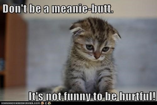 Don't be a meanie-butt.  It's not funny to be hurtful!