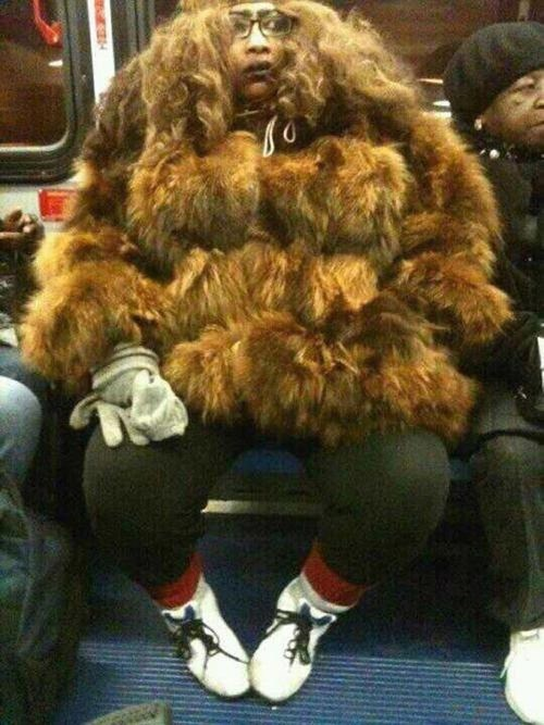 A Furby Rides the Bus