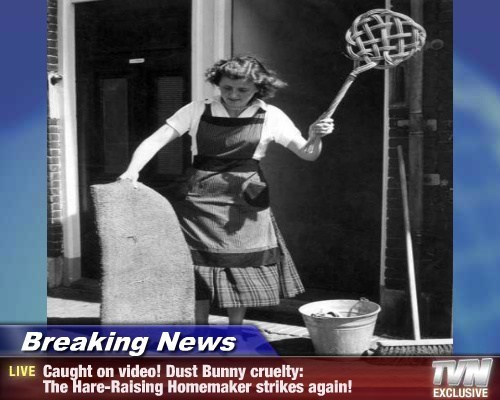 Breaking News - Caught on video! Dust Bunny cruelty:  The Hare-Raising Homemaker strikes again!
