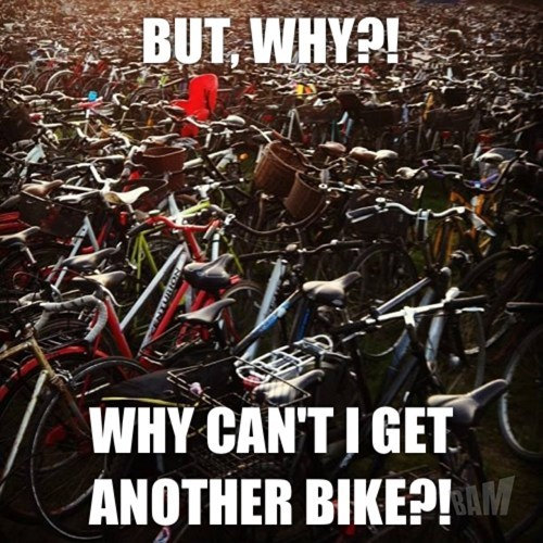You can never really own too many bicycles