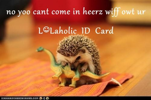 no yoo cant come in heerz wiff owt ur L☺Laholic  ID  Card
