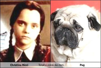 Christina Ricci Totally Looks Like Pug