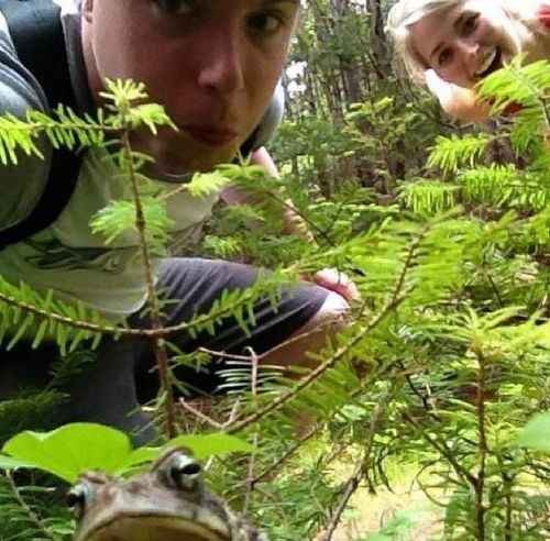 nature,photobomb,funny,frogs