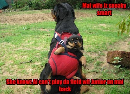 She'z got him on a tight leash